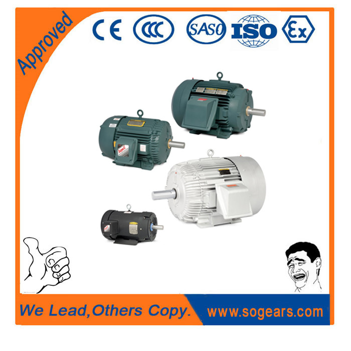 AEEF Series Electric Motor