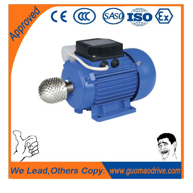 Coconut Digger Electric Motor