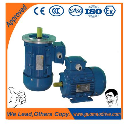 Y2 Series Electric Motors