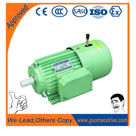 Yej Series Braked Electric Motor