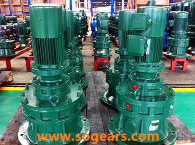 cycloidal gear reducer